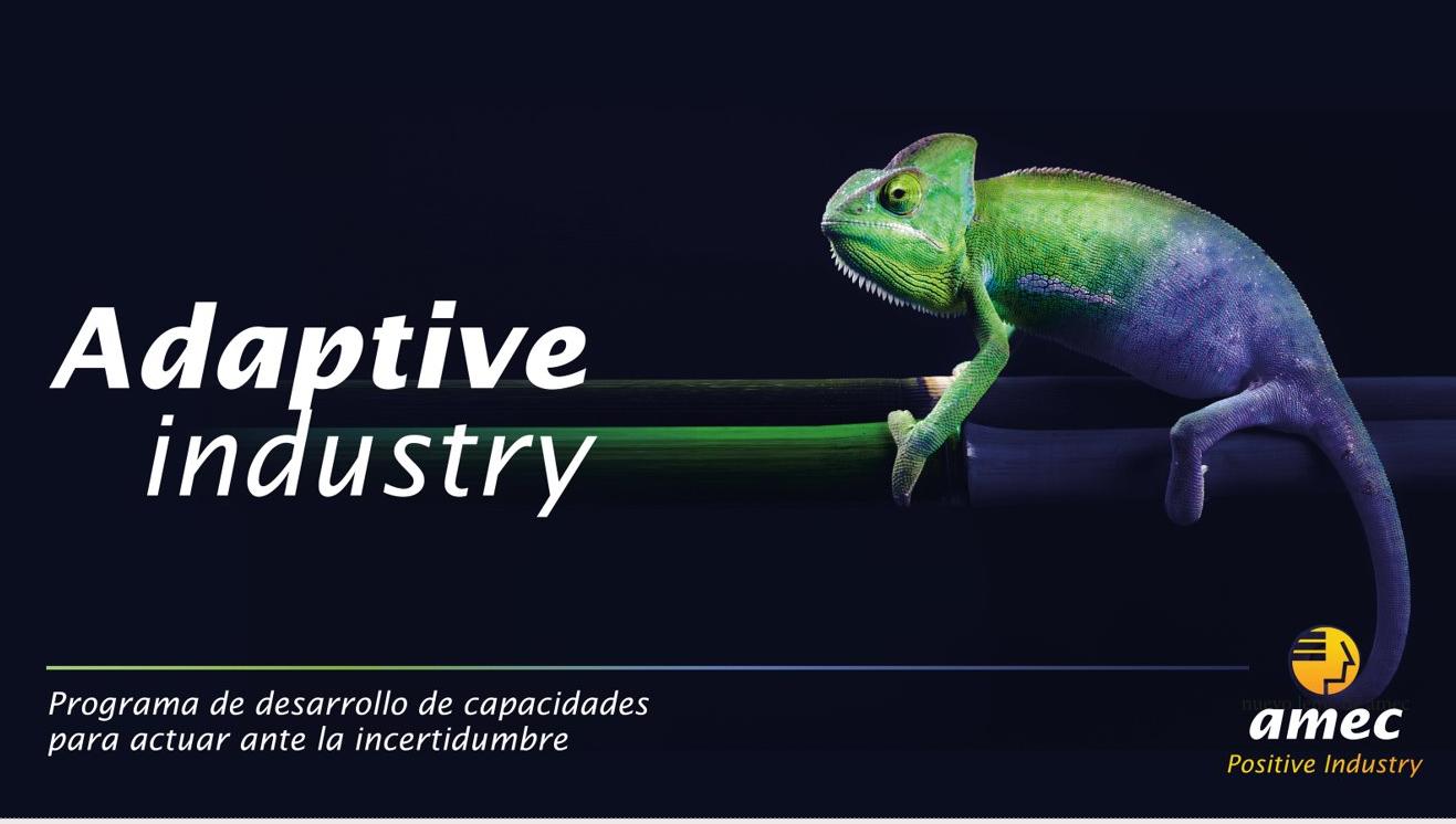 Adaptive Industry - Programa de desarrollo de capacidades para actuar ante la incertidumbre