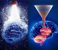 Como vender sin vender - Como te ayuda la neurociencia a la venta